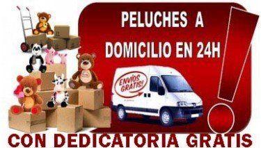 PELUCHES A DOMICILIO EN 24 H